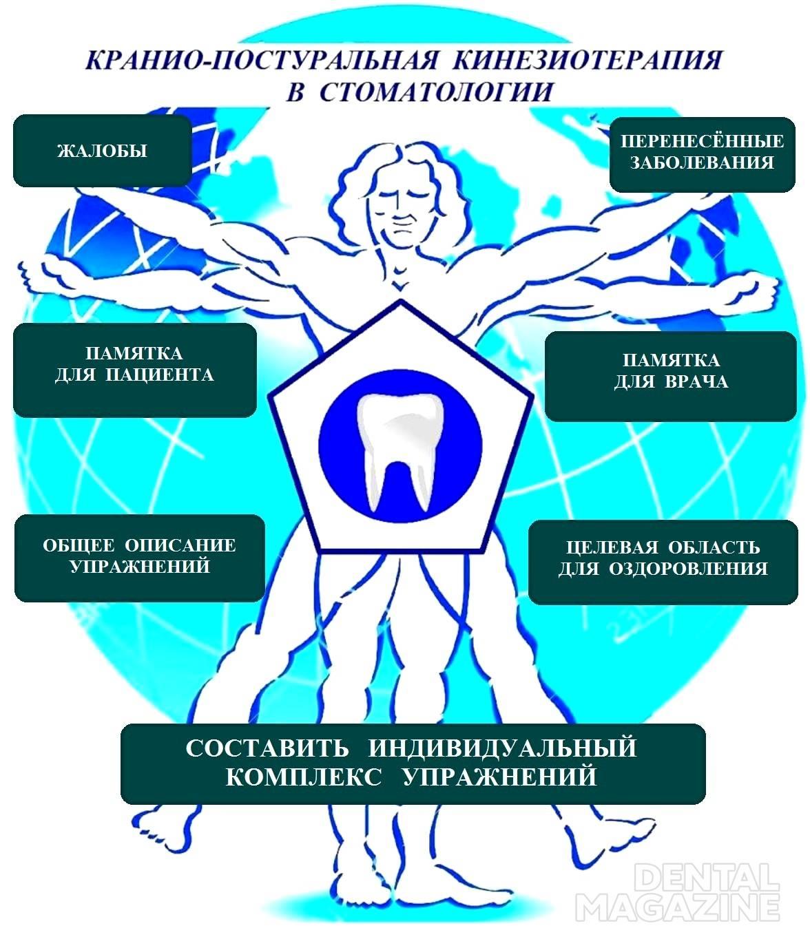 Рис. 2. Главная страница мобильного приложения «Краниопостуральная кинезиотерапия в стоматологии».