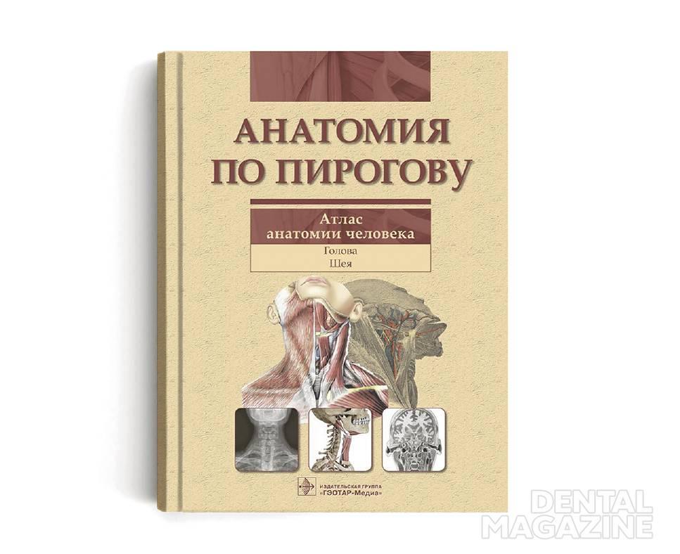 анатомия_opt