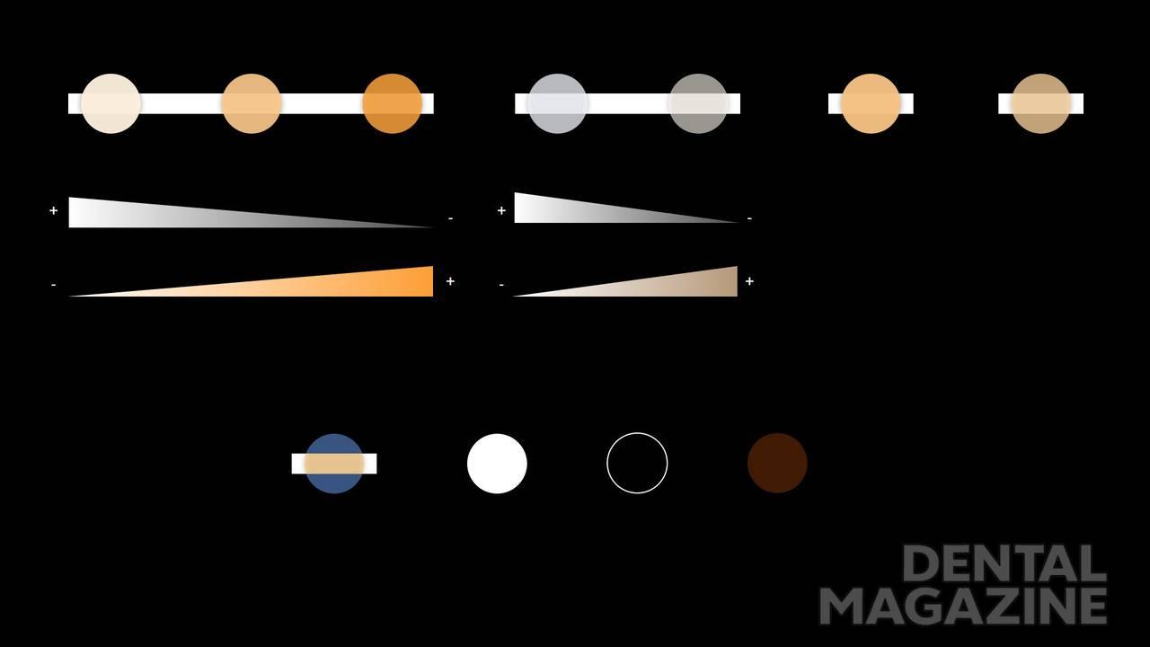 Таблица 1. Полный спектр оттенков, входящих в систему Essentia. основные оттенки (верхний ряд) и модификаторы (нижний ряд)